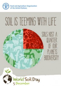 World Soil Day 4